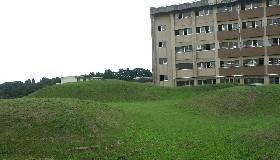 iigouisaki